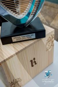 SJCF-Legendes-2015-Concours-Youngtimers-Trophée-01